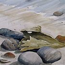 Beach stones and Driftwood by loralea