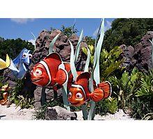 Nemo at Walt Disney World Photographic Print