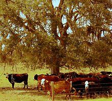 Rural Charm by AuntDot
