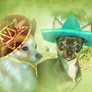 Little Sombrero&#x27;s ....Chihuahua by Trudi&#x27;s Images