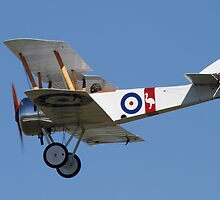 Sopwith Camel by Daniel McIntosh