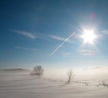 Sun, Snow, Fog & Contrail  by Lisa Diamond