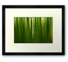 betwixt Framed Print