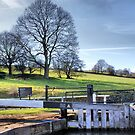 Dobson Locks At Apperley Bridge by Sandra Cockayne