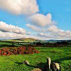 Dartmoor Landscape by Janice Petitjean