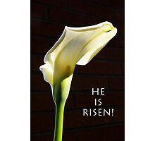 """""""he is risen"""" calla lily Photographic Print"""