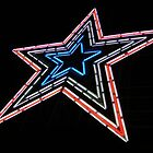 Mill Mountain Star~ by virginian