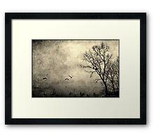 Birds of Hatzic Framed Print