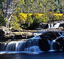 Enchanted Walk Fall by Patrick Reid