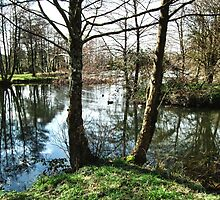 The Lake At Mangerton Mill by lynn carter