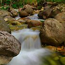 Even Flow...Eurobodalla, MT Buffalo. by Petehamilton