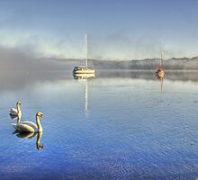 A Great Day For Swanning About... by VoluntaryRanger