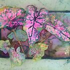 Caladiums 5 by Deborah Younglao