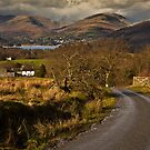 Views towards Windermere by Shaun Whiteman