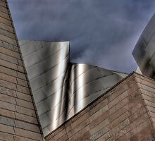 Disney Concert Hall by Doug Dailey
