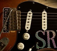 SRV Strat by Brian Dugay