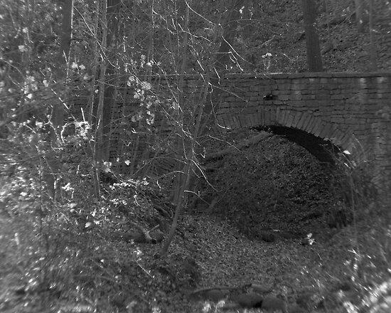 Bridge in the Ravine by Anthony Roma