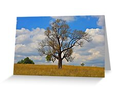 Lone Tree Hill-Hunter Valley NSW Greeting Card