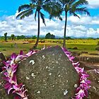 Kukaniloko - Birthing Stones on Oahu by scottmarla