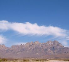 Sunny and 77  (Organ Mountians) by CynLynn