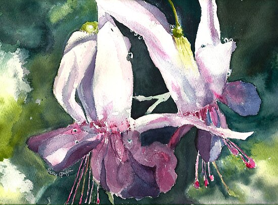 Ballet of the Fuschia by Sally Griffin