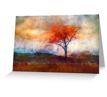 Alone in Colour Greeting Card