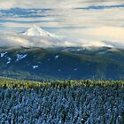 Across the Bull Run Valley to Mt Hood by Tula Top