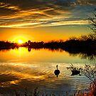 Dreamy Sunset by Saija  Lehtonen