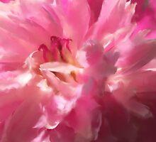 Pinkity by Fay270