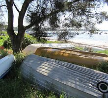 Resting, Callala Bay, NSW by Lunaria