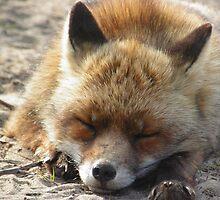 Sleeping Beauty  by angeljootje