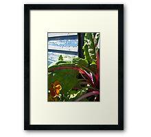 Rustic Blue Garden - Denver Botanic Gardens Framed Print