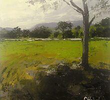 Kenilworth  Queensland Landscape by Chris Hobel