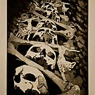 Dancing With Death- Intaglio Print by Amanda Heigel