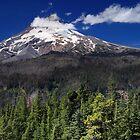 Dominion - Mt. Hood (horizontal) by Tula Top