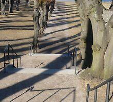 Shadows in the Sun by HeklaHekla