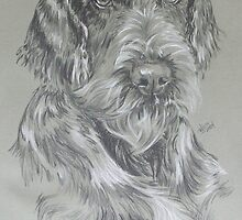 German Wire-haired Pointer by BarbBarcikKeith