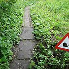caution! snails by annet goetheer