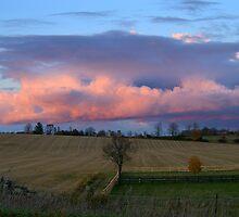 Gods Little Acre......... by Larry Llewellyn