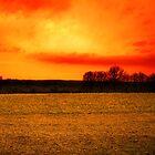Red Sky Field by jimclark
