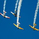 Steep Dive in Formation by JohnKarmouche