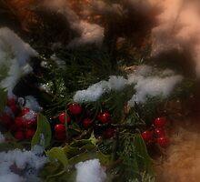 Snowy Christmas holly by Dawna Morton