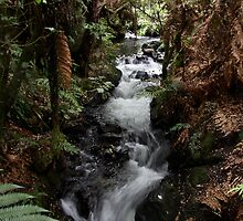 Buried Village Falls 1 by burning-orange