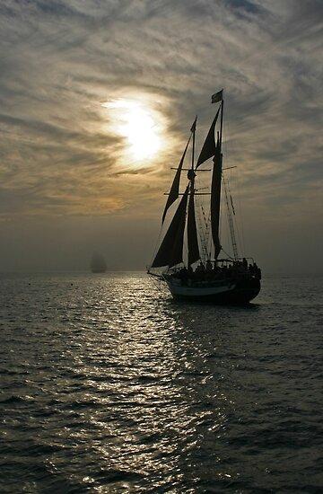 Tall Ship in the Fog - Key West by Debbie Pinard