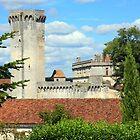 Chateau at Bourdeilles, Dordogne by Liz Garnett
