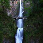 Multnomah Falls by Chrisdor