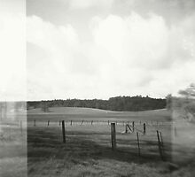 the field. by Stephanie Welling