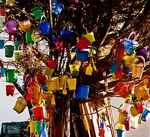 Bucket and Spade Tree - Lulworth, England by Deb Gibbons