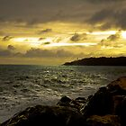 Beesands by MickHay