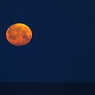 """Super Moon"" over Lake Michigan by BarbL"